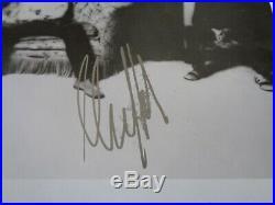 Rolling Stones Mick Taylor Autograph An Original Signed Press Photo Circa 1970